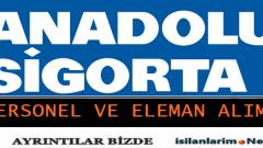 Anadolu Sigorta 2015 İş İlanları ve İş Başvuru Formu