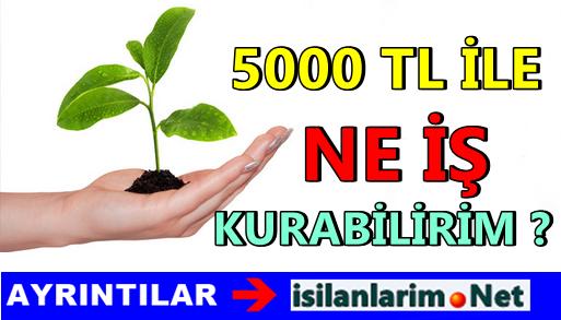5000 TL ile Ne İş Kurabilirim Diyenlere Fikirler