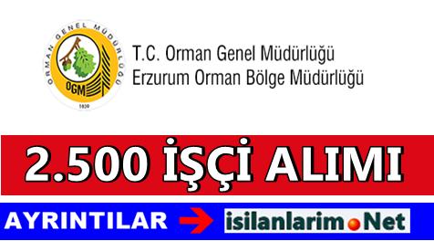 Erzurum ve İlçeler 2.500 Fidan Dikim İşçisi Alımı 2015