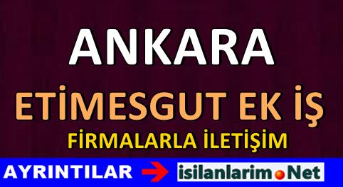 Etimesgut Ankara Evde Yapılacak Ek İş Fikirleri