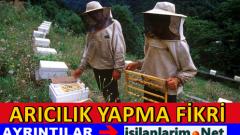 Arı Yetiştiriciliği ve Organik Bal Üretimi Yapmak