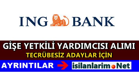 ING Bank Gişe Yetkili Yardımcısı Alımı 2015 İlanı
