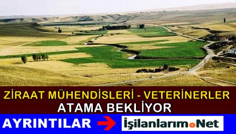 Ziraat Mühendisleri Halen Bakanlıktan Atama Bekliyor