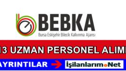 Bursa Eskişehir Bilecik Kalkınma Ajansı Personel Alımı