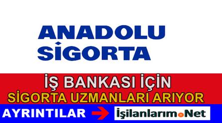 Anadolu Sigorta Maksimum Sigorta Uzmanı Alımı 2015