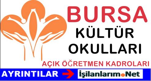 Özel Bursa Kültür Okulları Öğretmen Alımı Başvurusu 2015