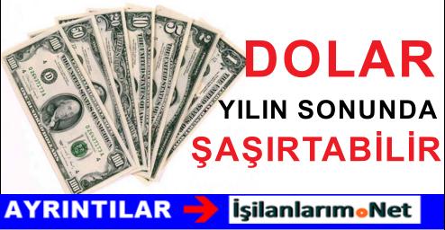 Dolar 2015 Yılı Sonunda Düşüş Yaşayabilir