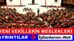 Yeni Kurulacak Mecliste Milletvekillerinin Meslekleri Neler ?