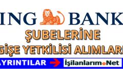 ING Bank Gişe Yetkilisi Alımı 2016 İş Başvurusu