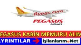 Pegasus Kabin Memuru Alımı 2017