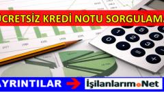 Ücretsiz Kredi Notu Sorgulama ve Öğrenme