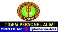 Tarım İşletmeleri Genel Müdürlüğü İşçi Alımı 2017