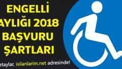 Engelli Maaşı 2020 Nasıl Alınır, Şartları Nelerdir?