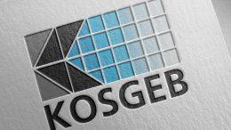 KOSGEB'in Desteklediği, Kredi ve Hibe Verdiği Sektörler [TAM LİSTE]
